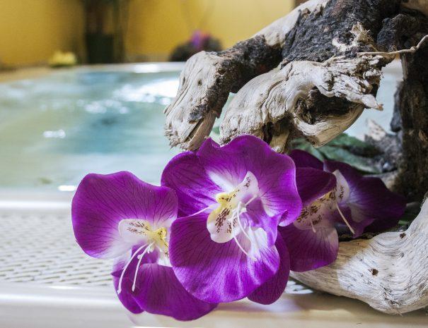 fiori a bordo vasca idromassaggio del villaggio